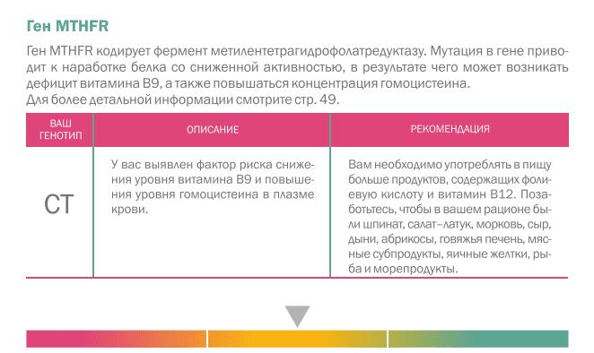 Ген MTHFR
