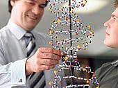 Генетика помогает найти причины заболеваний.