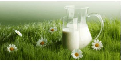 Можно ли вам употреблять молочные продукты покажет генетический тест.